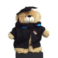 6904-Graduation-Bear